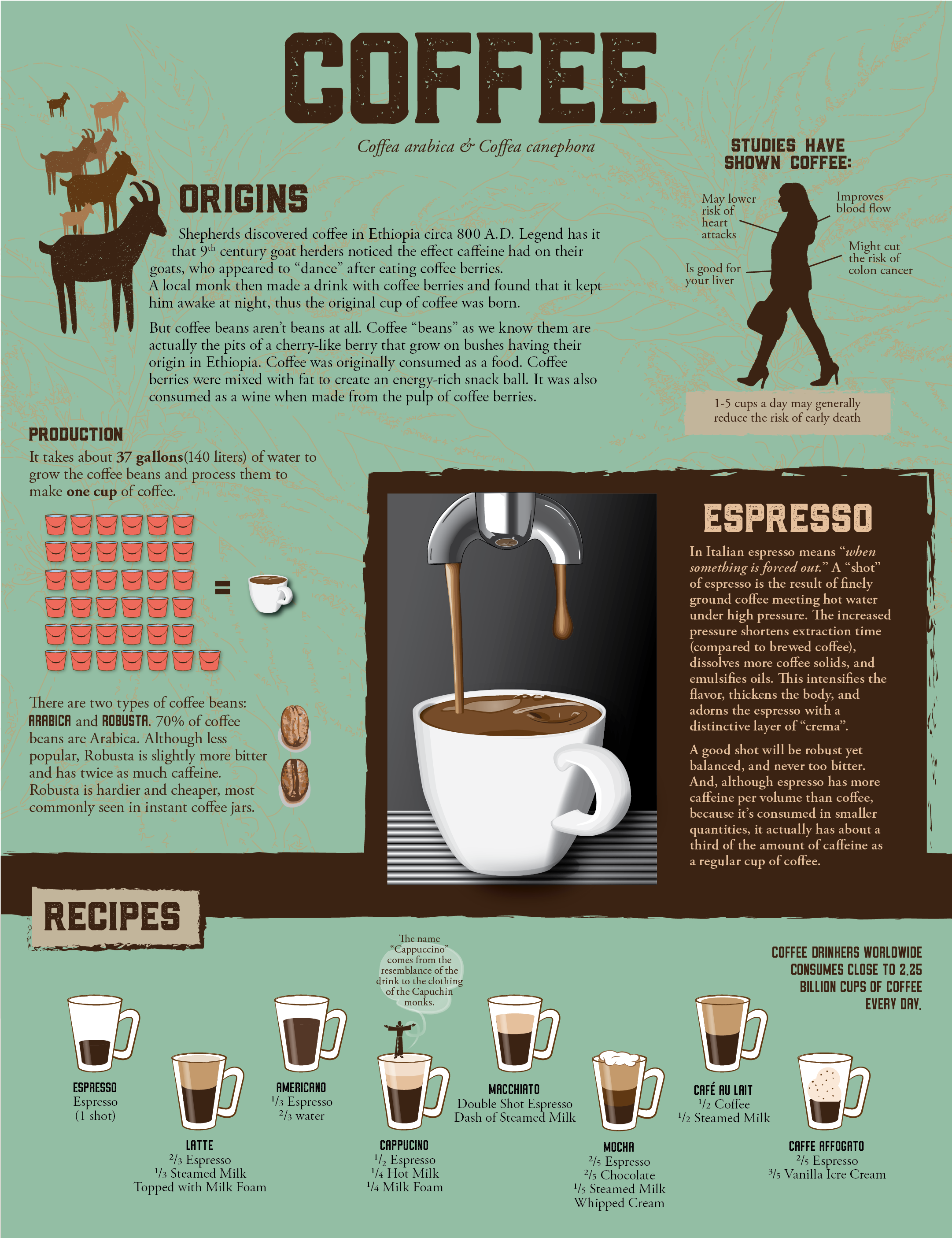 infographic_coffee.png
