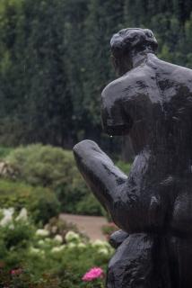 Rodin's Jardin
